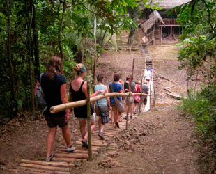 Caminata en Manu