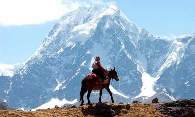camino-ausangate-caballo