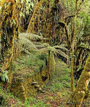 ruta de camino inca