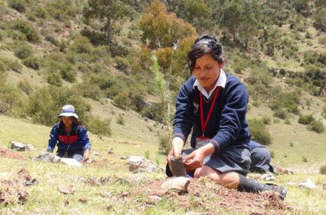 escolares-reforestando