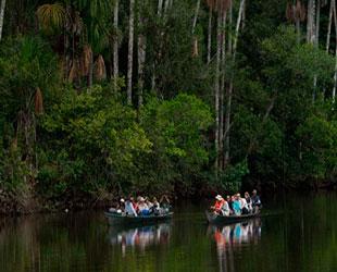 Rio del Manu