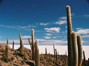 Uyuni Bolivia