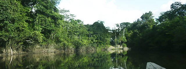 Rio Yarapa Selva Peruana