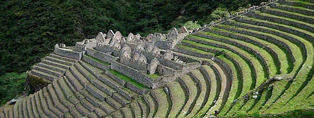 Wiñaywayna - Machu Picchu